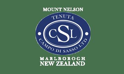 Vinopolis-Mx-Mount-Nelson-logo