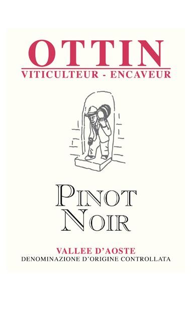 Vinopolis-Mx-Ottin-lbl-Pinot-Noir